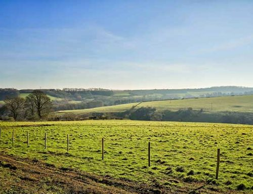 LAND NEEDED TO SATISFY DEMAND FOR HORSLEY HOMES